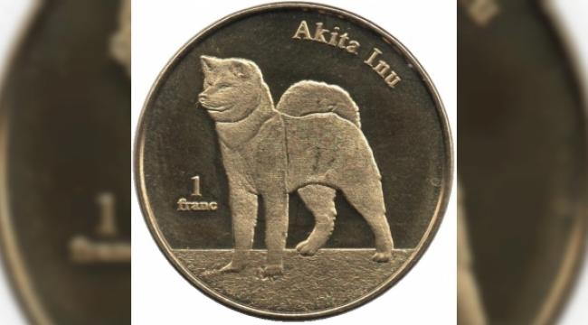 Akita Inu (AKITA) coin geleceği, Akita alınır mı? 10 Mayıs Akita coin analizi