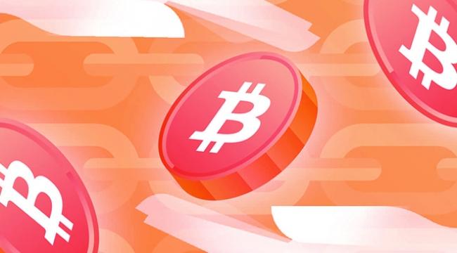 Bitcoin Taproot yükseltmesi hakkında bilmeniz gereken her şey